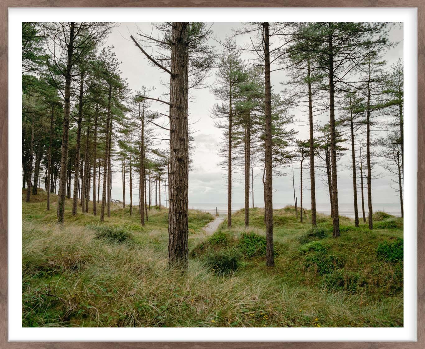 Hang Tough 'Raven Wood' Slip Mounted in Walnut (Framing Only)