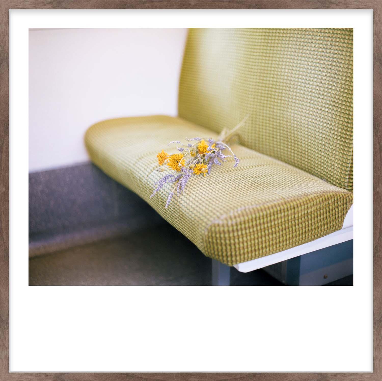 Hang Tough 'Dart Flowers' Slip Mounted in Walnut (Framing Only)